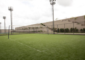 Multipurpose Ground